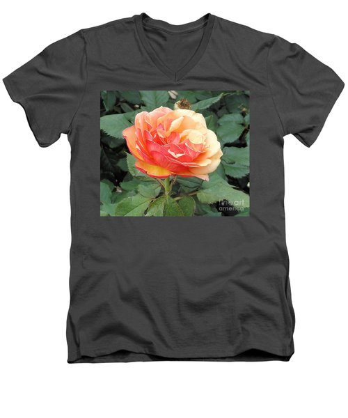 Men's V-Neck T-Shirt featuring the photograph Perfect Rose by Janette Boyd