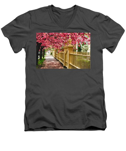 Perfect Time For A Spring Walk Men's V-Neck T-Shirt