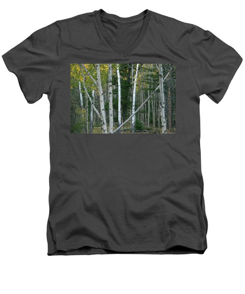 Perfection In Nature Men's V-Neck T-Shirt