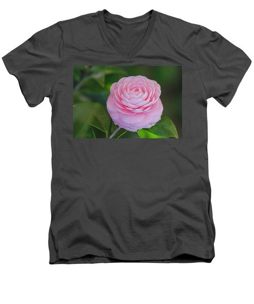 Perfection Men's V-Neck T-Shirt