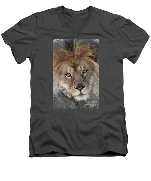 Pet Me Men's V-Neck T-Shirt