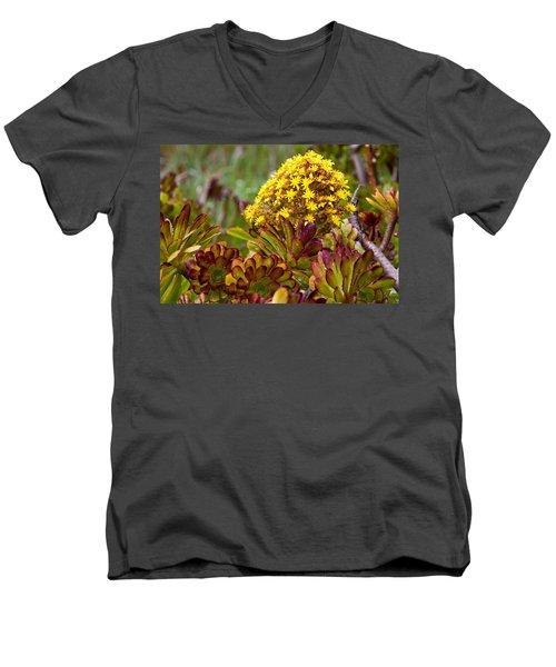 Petal Dome Men's V-Neck T-Shirt by Melinda Ledsome