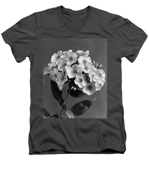 Phlox Blossoms Men's V-Neck T-Shirt