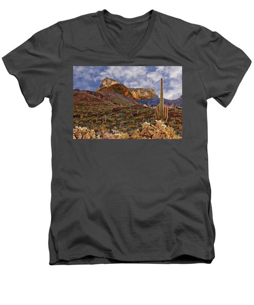 Picacho Peak Men's V-Neck T-Shirt