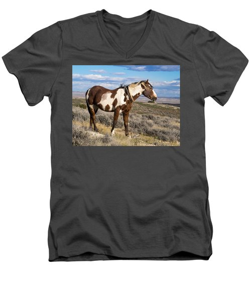 Picasso Of Sand Wash Basin Men's V-Neck T-Shirt by Nadja Rider