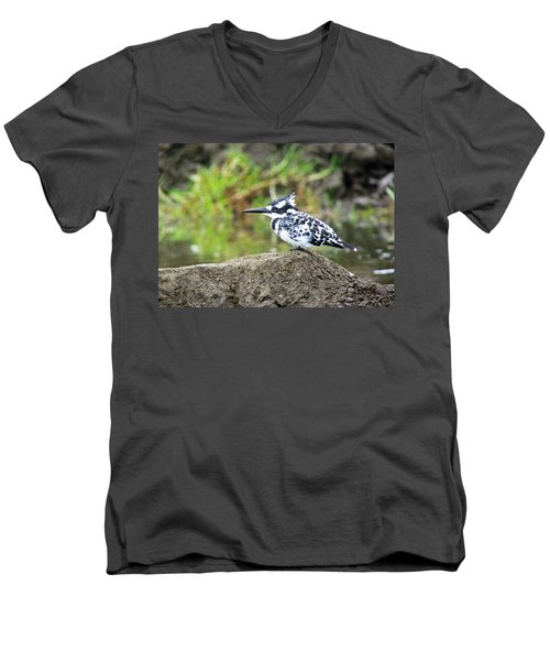 Pied Kingfisher Men's V-Neck T-Shirt by Tony Murtagh
