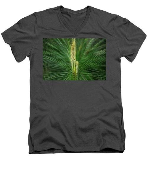 Pine Cone And Needles Men's V-Neck T-Shirt