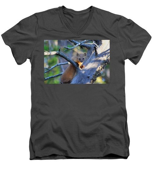 Men's V-Neck T-Shirt featuring the photograph Pine Martin by Shane Bechler