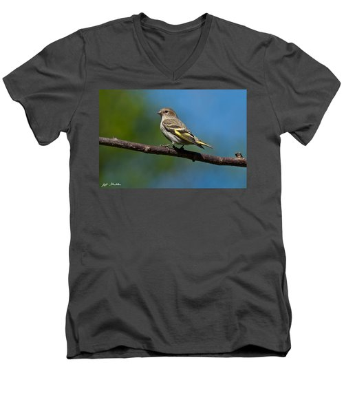 Pine Siskin Perched On A Branch Men's V-Neck T-Shirt