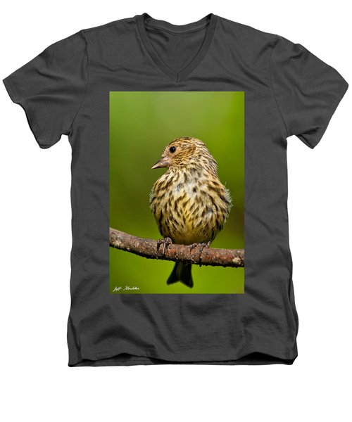 Pine Siskin With Yellow Coloration Men's V-Neck T-Shirt