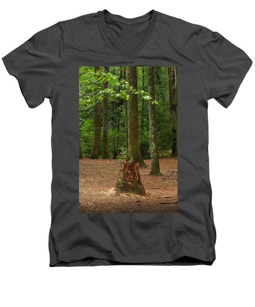 Pine Stump Men's V-Neck T-Shirt