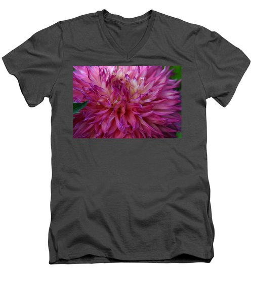 Men's V-Neck T-Shirt featuring the photograph Pink And White Dahlia  by Denyse Duhaime