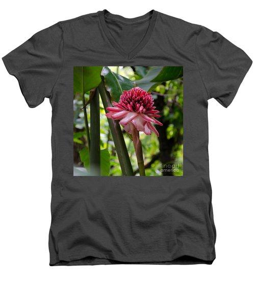 Pink Torch Ginger Men's V-Neck T-Shirt by Laurel Best