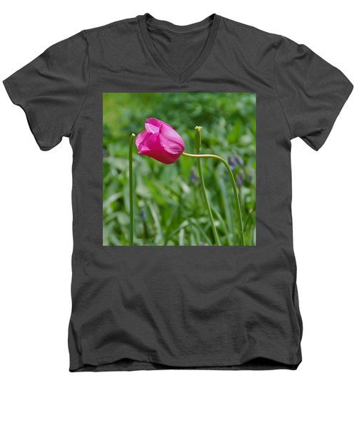 Men's V-Neck T-Shirt featuring the photograph Pink Tulip by Aimee L Maher Photography and Art Visit ALMGallerydotcom