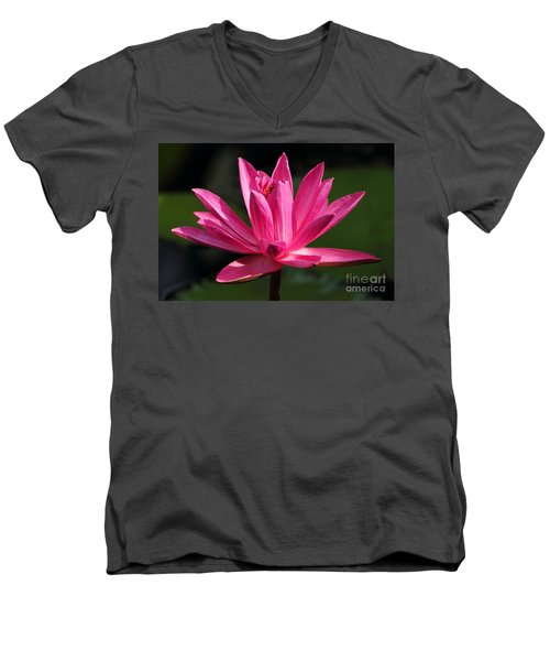 Pink Water Lily Men's V-Neck T-Shirt