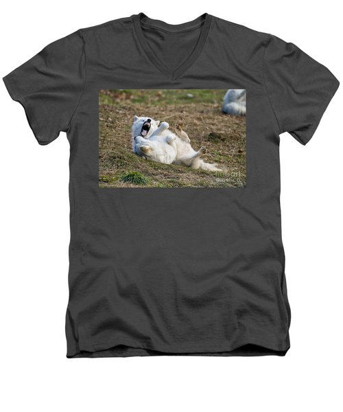 Men's V-Neck T-Shirt featuring the photograph Playful Arctic Wolves by Wolves Only
