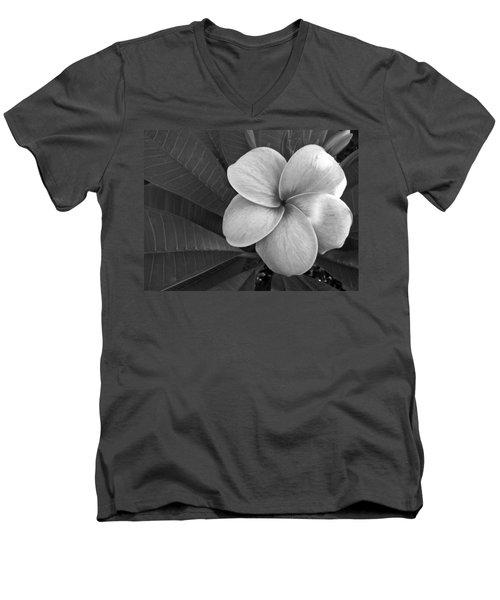 Plumeria With Raindrops Men's V-Neck T-Shirt