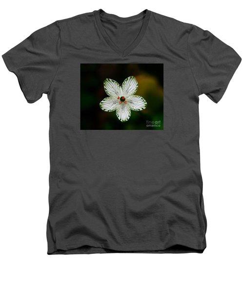 Men's V-Neck T-Shirt featuring the photograph Pocosin Manifest by Paul Rebmann