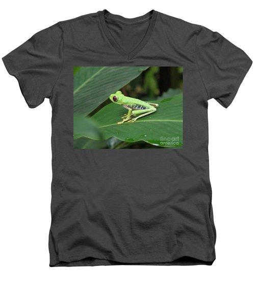 Poison Dart Frog Men's V-Neck T-Shirt