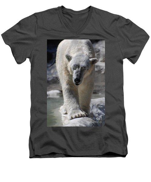 Polar Bear Balance Men's V-Neck T-Shirt by DejaVu Designs