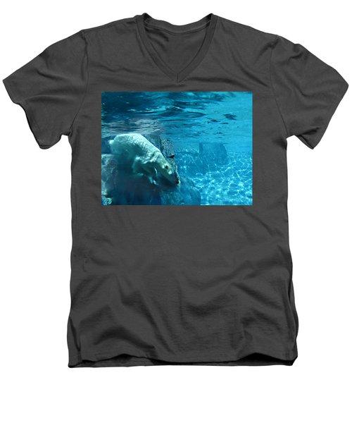 Polar Bear Men's V-Neck T-Shirt by Steve Karol