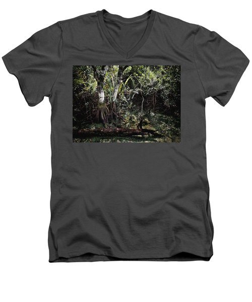 Pond Apple-1 Men's V-Neck T-Shirt