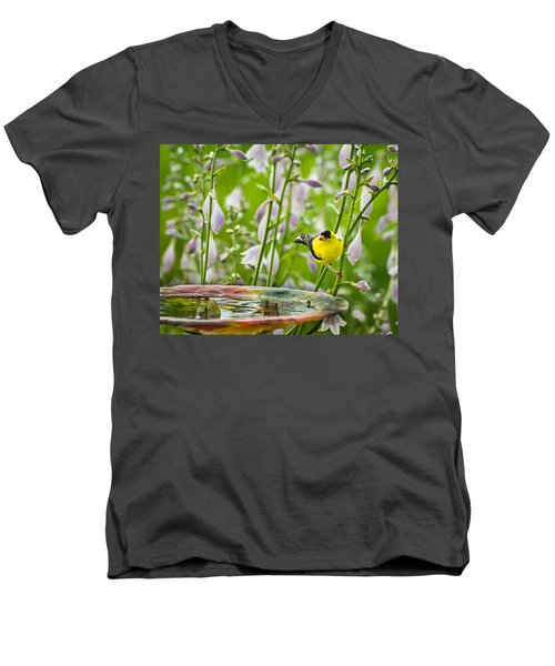 Poolside Perch Men's V-Neck T-Shirt