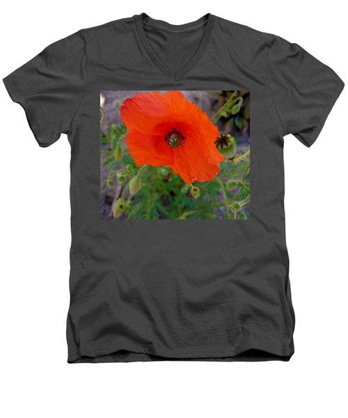Poppy Flower Men's V-Neck T-Shirt