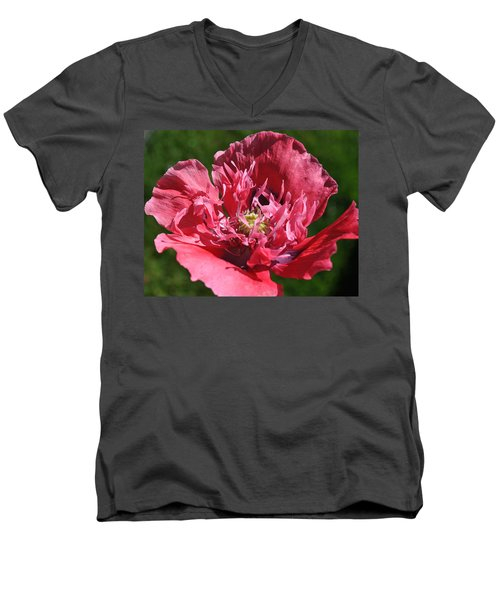 Poppy Pink Men's V-Neck T-Shirt