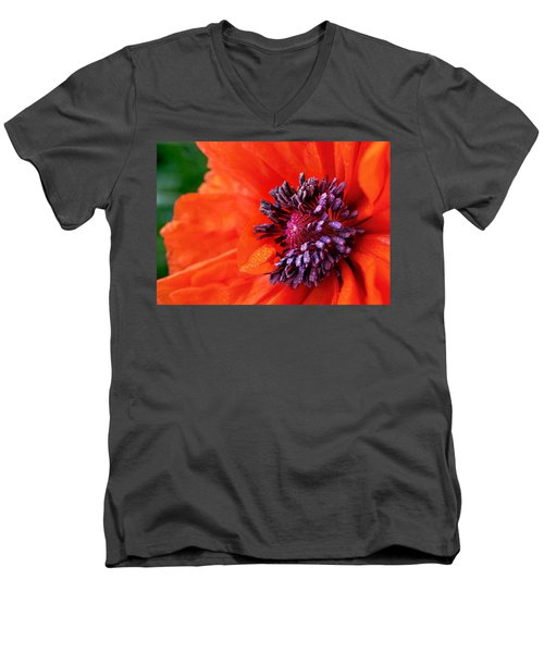 Poppy's Purple Passion Men's V-Neck T-Shirt