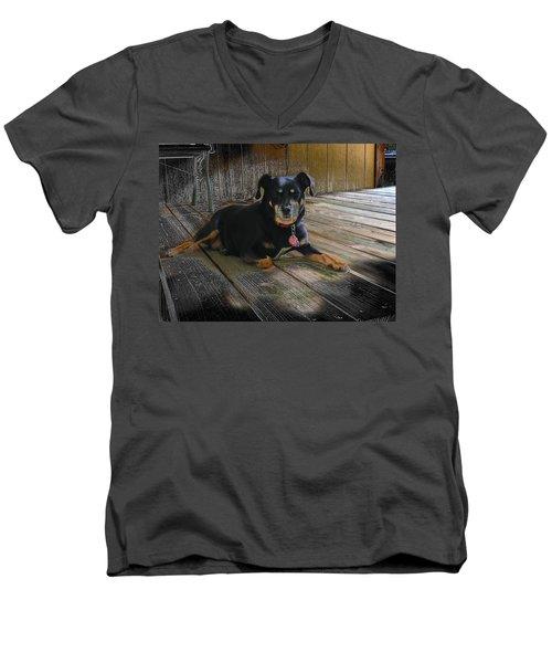Porch Patrol Men's V-Neck T-Shirt