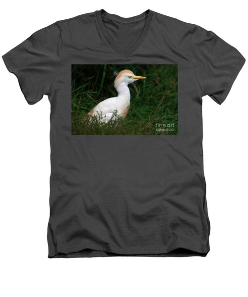 Portrait Of A White Egret Men's V-Neck T-Shirt