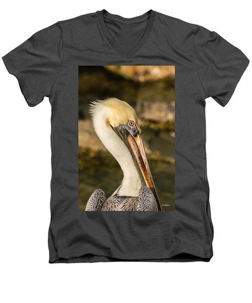 Posing Pelican Men's V-Neck T-Shirt