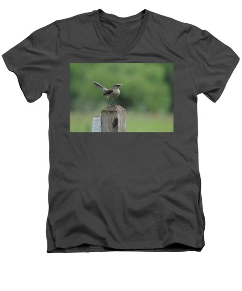 Posted Men's V-Neck T-Shirt