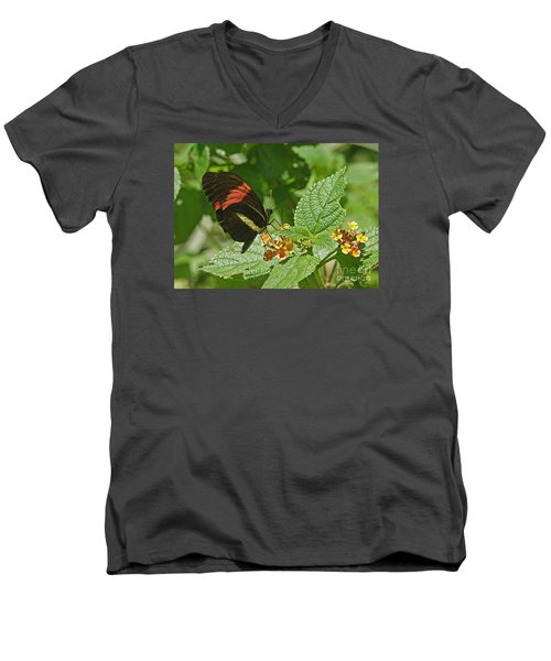 Men's V-Neck T-Shirt featuring the photograph Postman Butterfly 1 by Rudi Prott