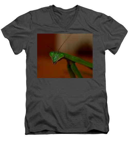 Praying Mantis Closeup Men's V-Neck T-Shirt