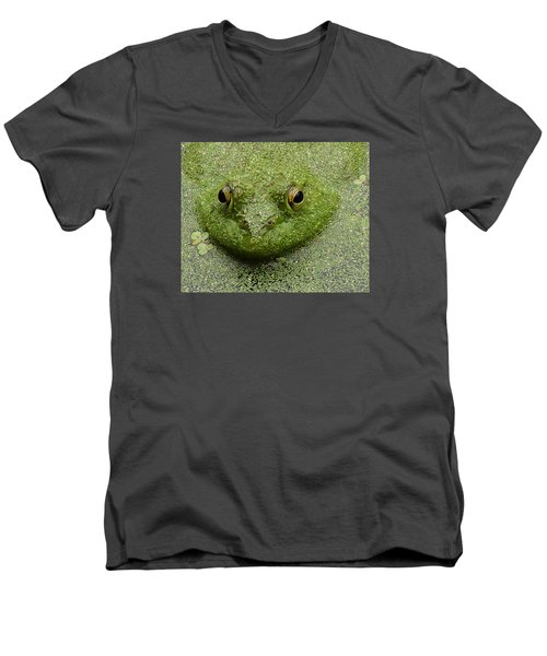 Predator Men's V-Neck T-Shirt by I'ina Van Lawick