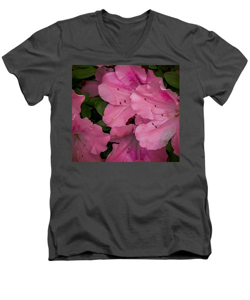 Premium Pink Men's V-Neck T-Shirt