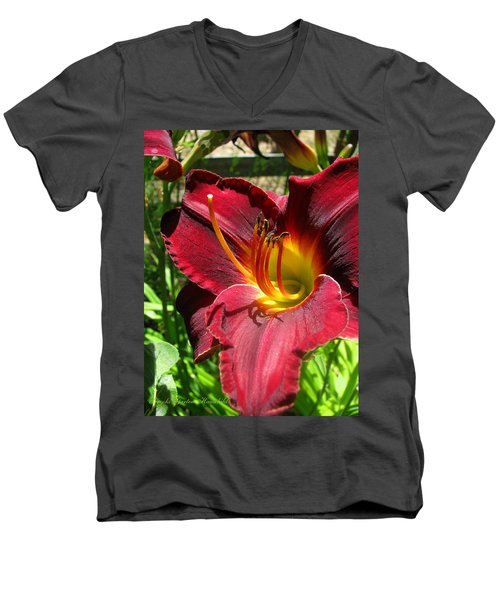 Men's V-Neck T-Shirt featuring the photograph Pretty As A Picture by Brooks Garten Hauschild