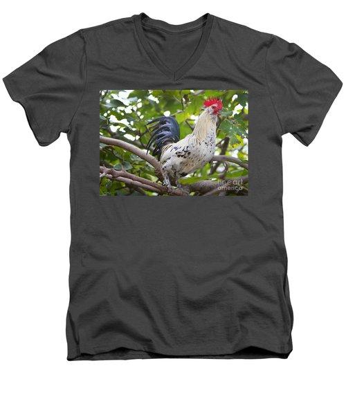 Men's V-Neck T-Shirt featuring the photograph Pretty Boy by Erika Weber
