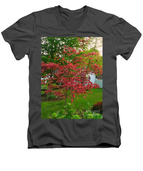 Men's V-Neck T-Shirt featuring the photograph Pretty Pink Beech Tree by Becky Lupe