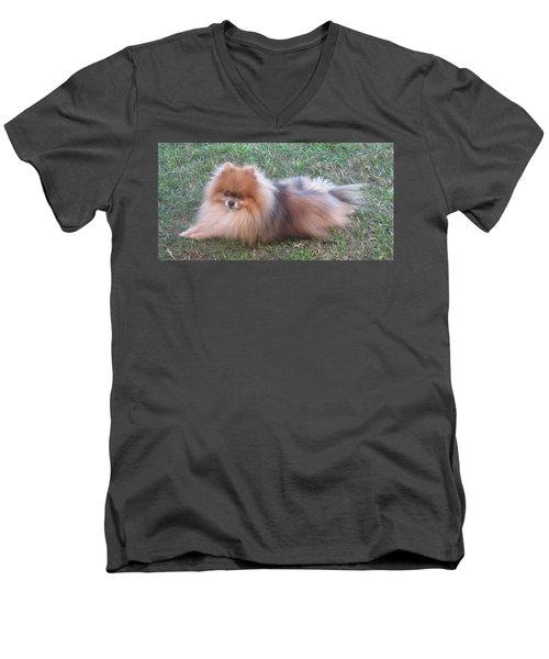 Pretty Pom Men's V-Neck T-Shirt