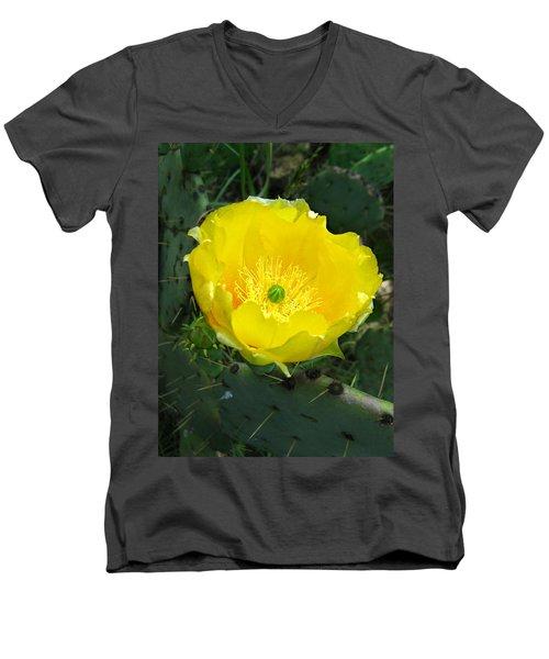 Prickly Pear Cactus Men's V-Neck T-Shirt