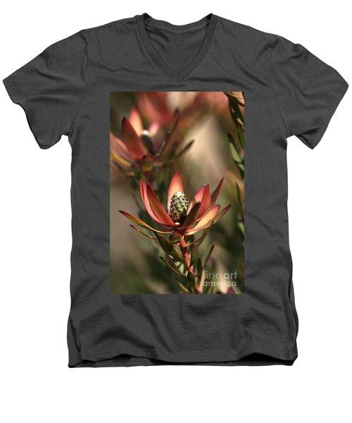 Protea  Men's V-Neck T-Shirt