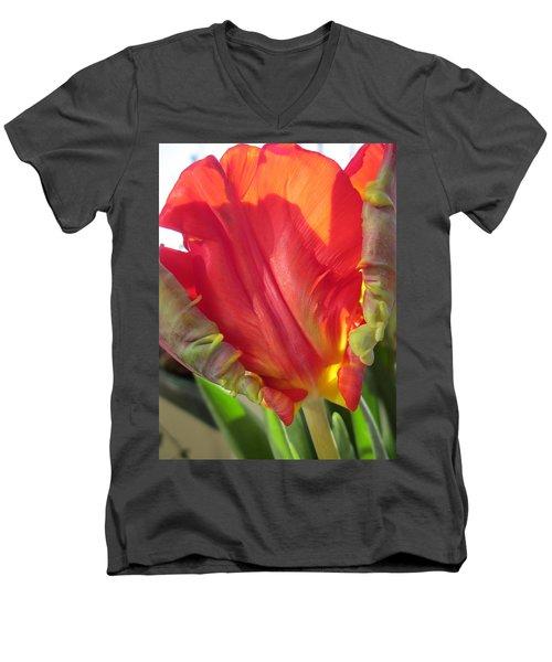 Proud Men's V-Neck T-Shirt