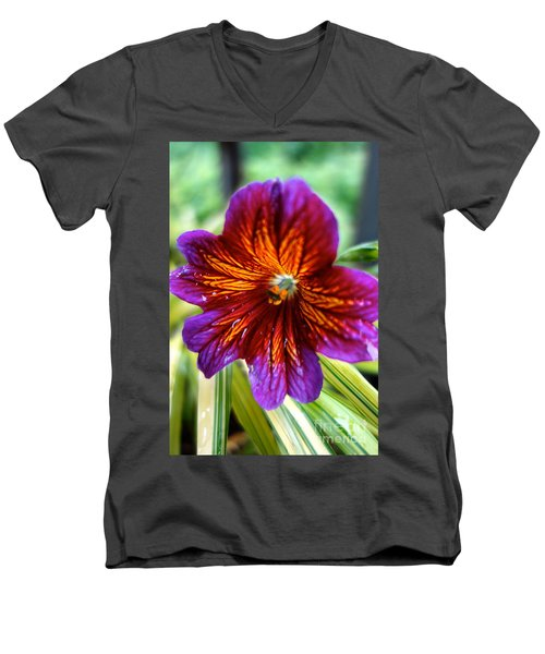 Purple And Orange Men's V-Neck T-Shirt