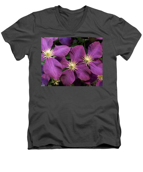Purple Clematis Men's V-Neck T-Shirt