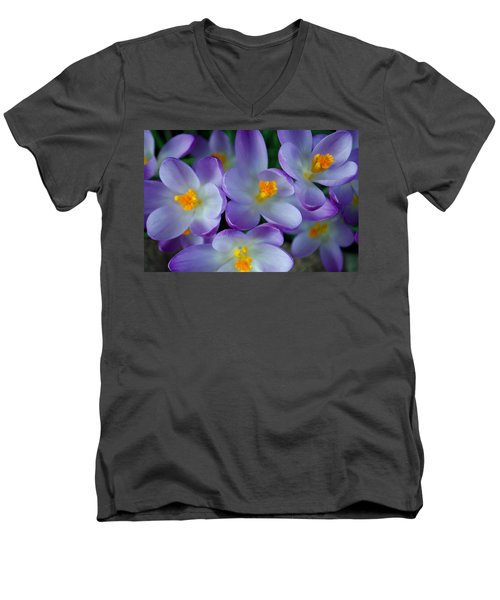 Purple Crocus Gems Men's V-Neck T-Shirt