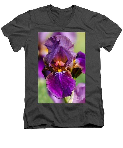 Purple Flag Men's V-Neck T-Shirt