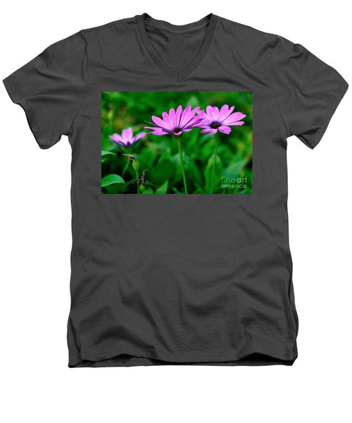 Men's V-Neck T-Shirt featuring the photograph Purple Flowers by Joe  Ng
